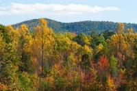 new-home-development-charlottesville-va-albemarle-county-views-home-callout2-300x200
