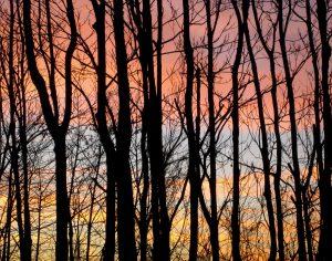 sunset_11_13_10-68